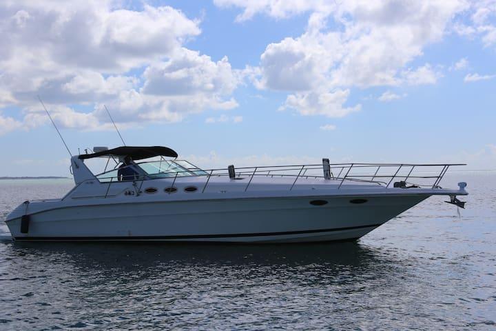 """Sea Ray Sundancer Luxury Yatch 42"""" - ROISSA"""