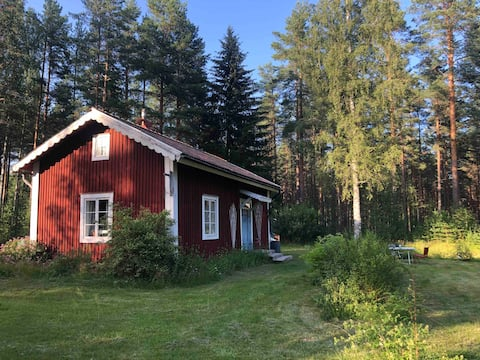 120 Year Old Swedish Cabin in the Woods