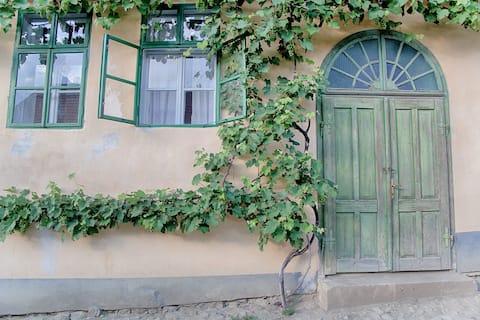 Mălâncrav 335 Saxon Guesthouse