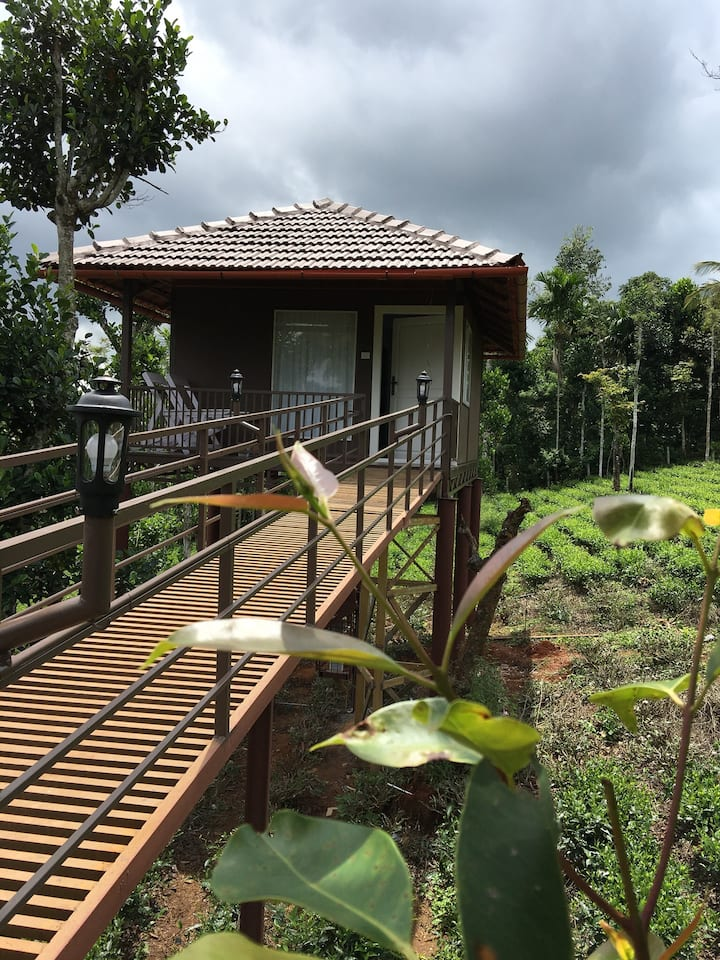 Harmony Farm Wayand - Sky High Cottage 1