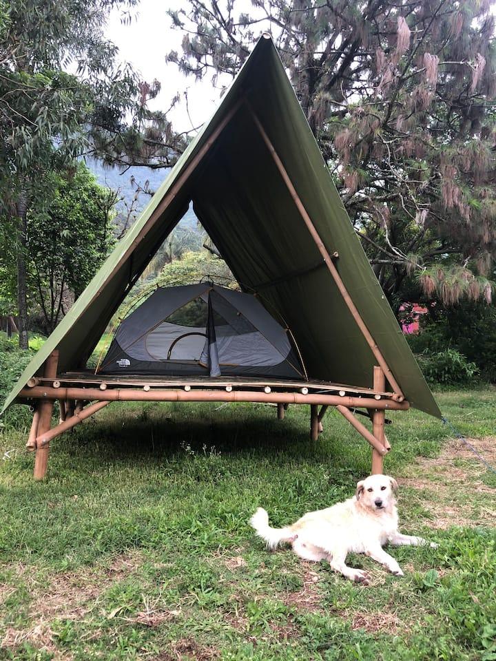 Bioparque Technochtitlan, nature, glamping, hiking