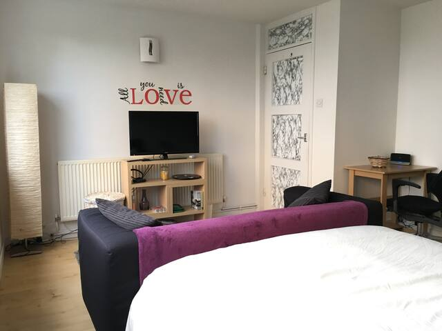 Bright & Large Double Bedroom on the Thames