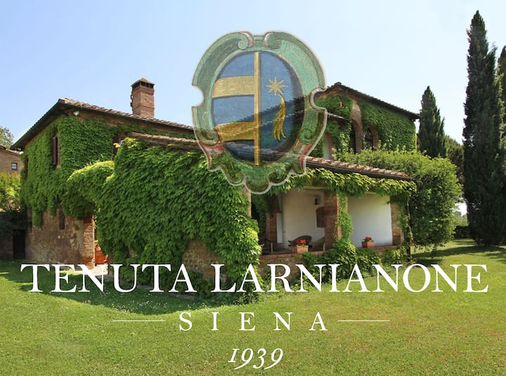 Exclusive Villa 5 km from Siena
