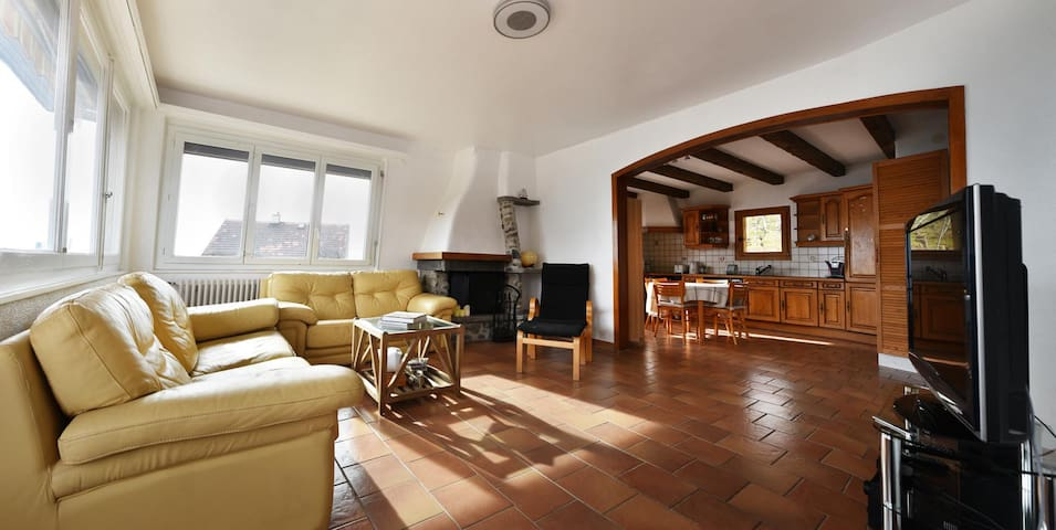 Peaceful location, Alps & Lake view - Bourg-en-Lavaux - Apartemen