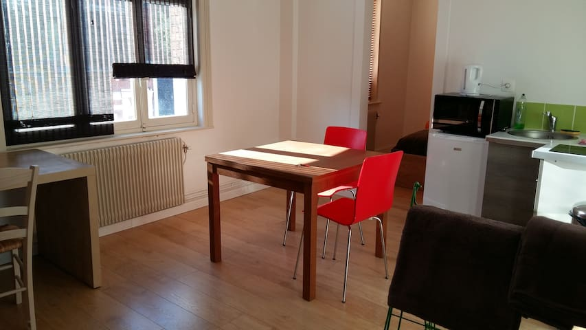 Quiet and nice appartment near métro in Lille - Lille - Apartamento