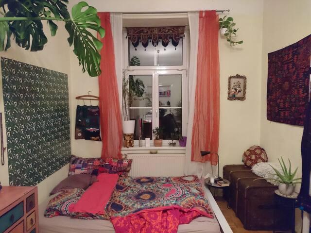 sehr gemühtliches Zimmer in Grazer Innenstadt