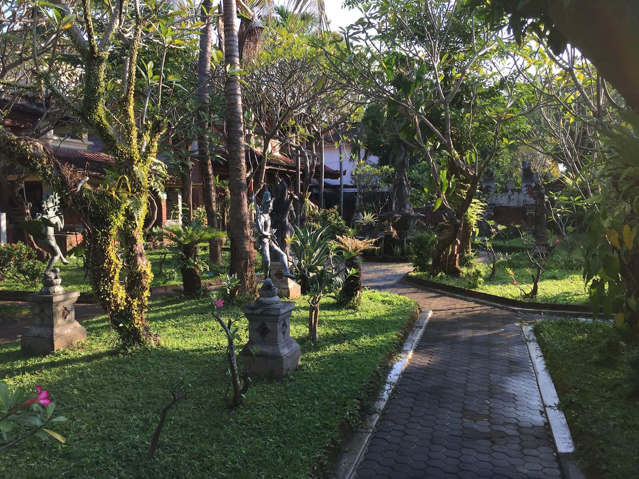 green garden around the hotel