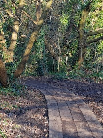 Country Walks in the city....Queens Woods, Highgate Woods and various parks.