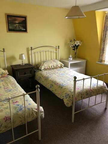 Charming Victorian House - Ilfracombe - Bed & Breakfast