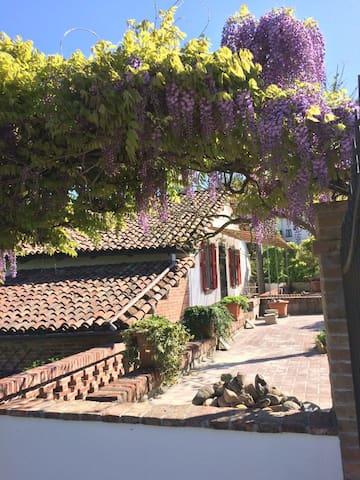 Paradis retrouvée - Castelnuovo Calcea - House