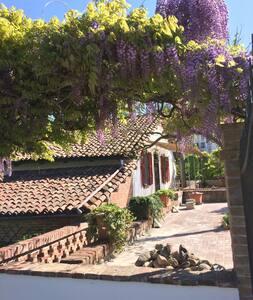 Paradis retrouvée - Castelnuovo Calcea - Haus