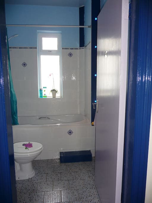 Shared Bathroom with Shower (only shared with us 2 owners)