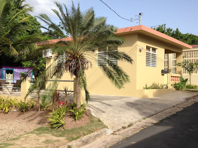 Casa Los Monos,  is a brand new rental property - Vieques - Hus