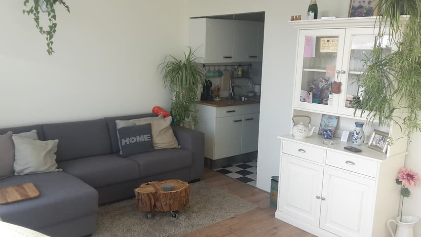 Beautiful apartment 15 minutes from oldtown - Utrecht - Apartment