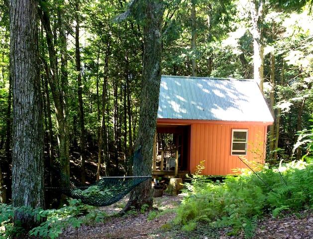 Cabin Sanctuary-Relax,Restore,Rejuvenate - Hyde Park - Blockhütte
