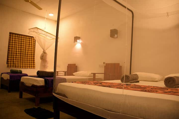 Family Room at Eagle Resort Arugam Bay