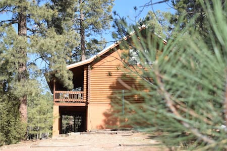 Secluded Log Cabin Paradise On 3 Acres!!!
