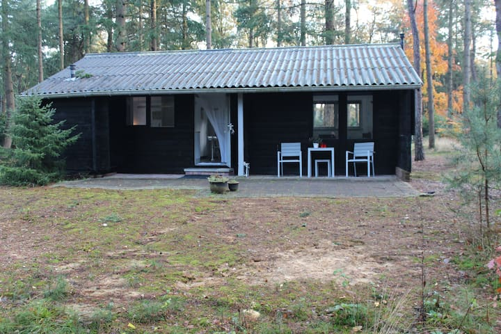 Romantic log cabin 100% privacy - Holten - Chalet