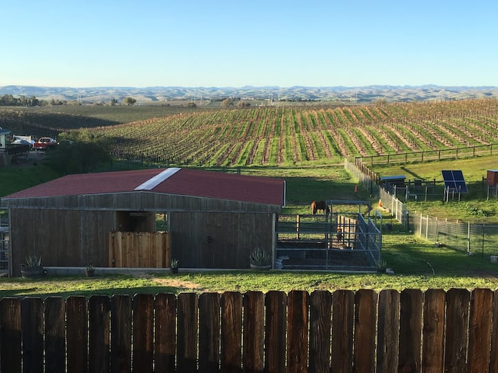 Escape to a Quiet Farm with Amazing Vineyard Views