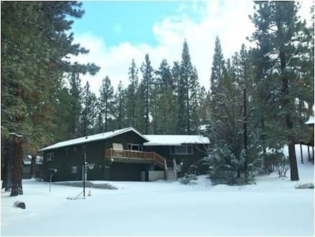 12 Bear Lodge 006
