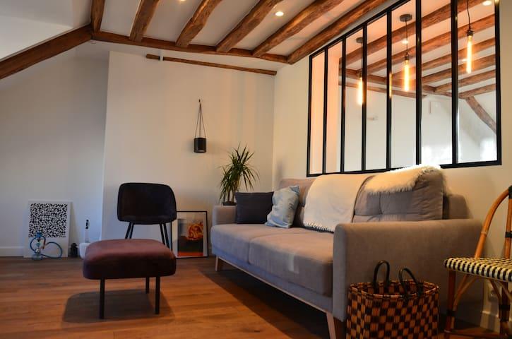 Bel appartement d'achitecte face château, calme
