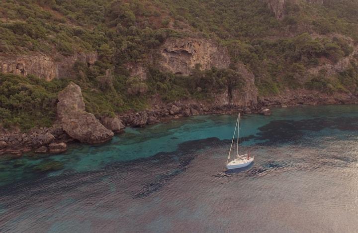 Feel The Joy of Sailing