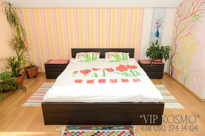 VIP-apartments in downtown - Chernivtsi - Appartement