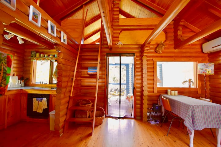 A sunny morning in the main cabin. This perspective is from the front door.