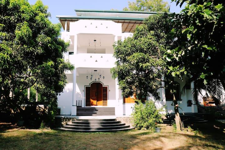 Sea Avenue Eco Garden deluxe single room