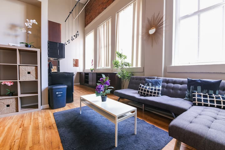 Downtown Denver Glorious 2BR 1Bath Apartment