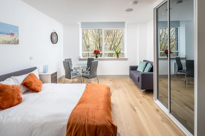 Elegant Studio flat in Seven Sisters