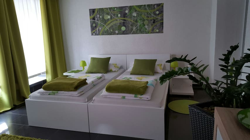 Gästeappartement Viktoria - Sinsheim - Appartement