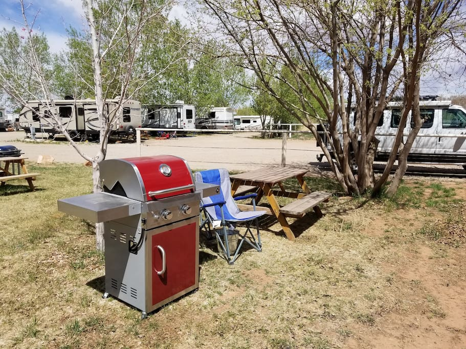 Your own grill, firepit and picnic table.