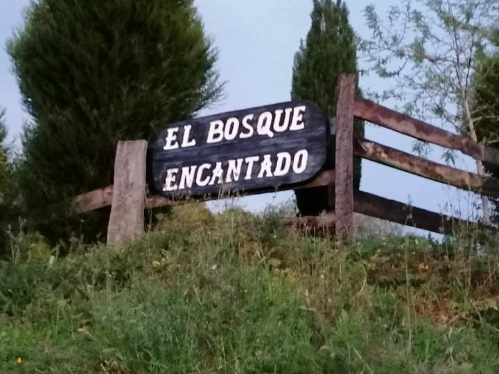 El Bosque Encantado Cantabria , para 11 personas