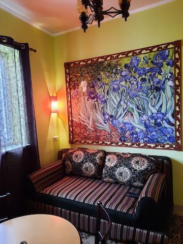Спальня на первом этаже,  12м, со своим санузлом.  Репродукция Ван Гога на стене,  диван раскладной, кинг-сайз, телевизор  ( спутниковое ТВ), WiFi, отопление керамопанели. Старинная люстра. Окно во двор с видом на фонтан. Свой выход во двор.