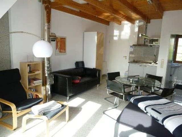 "SUNNY ROOFTOP-APARTMENT ""GUMSLE"" close to Basel"