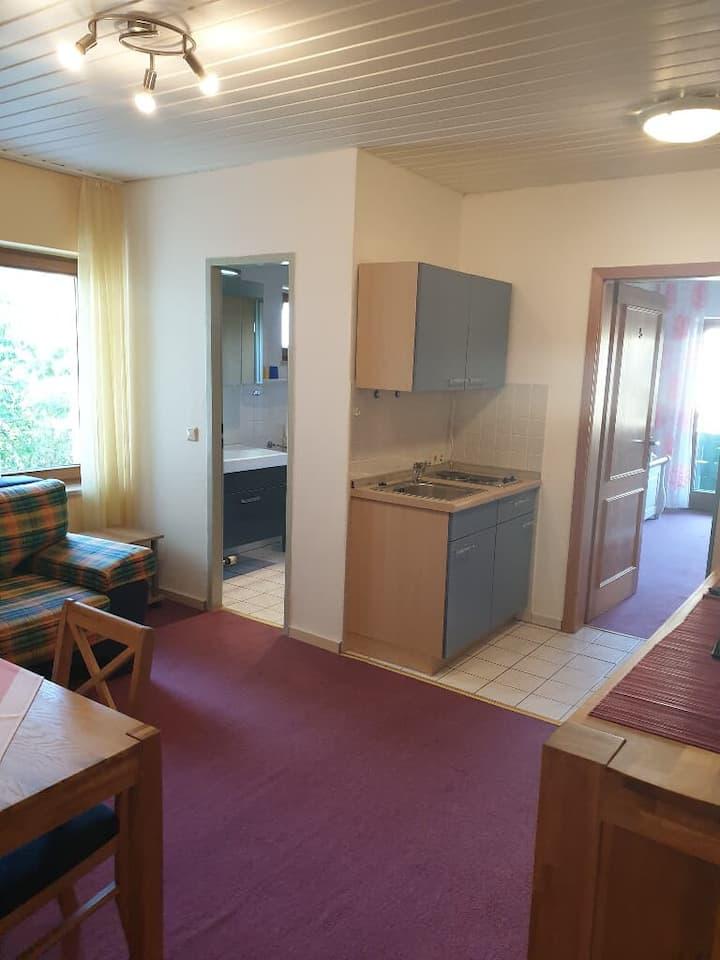 Haus Sonne (Kirchham), Apartment 1 - geräumige Wohnung mit kostenfreiem WLAN