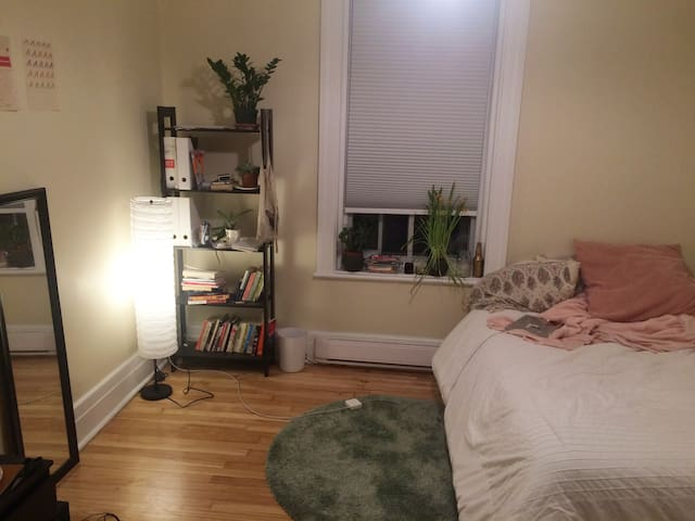 Sunny bedroom in perfect location for travellers - Westmount - Huoneisto
