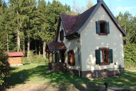 Pavillon de Chasse / Jagdhaus - Niederbronn-les-Bains - 独立屋