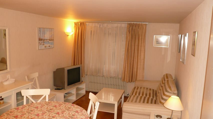 Nice appartment center of Tours - Tours - Apartment