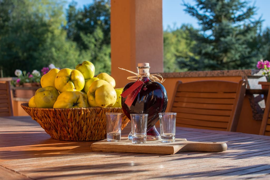 Fresh fruits and refreshing tipicaly Istrian drink
