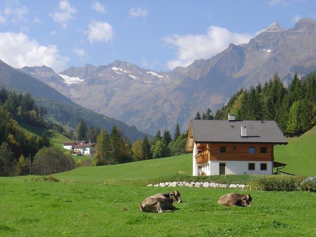 Urlaub am Fluenerhof - Reisenschuh