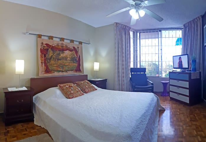 New Kingston Apartment with Swimming Pool &  WIFI
