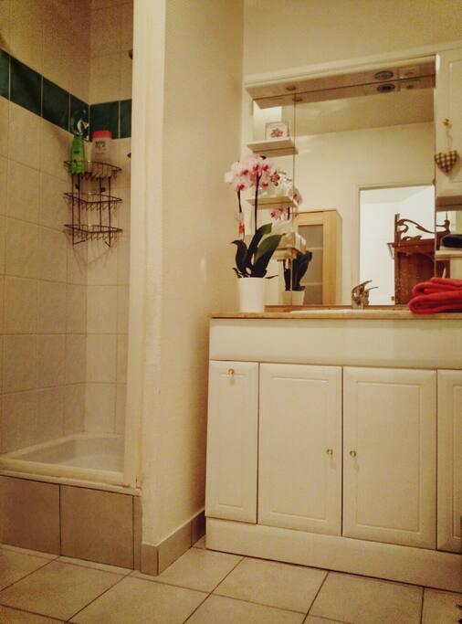 Salle de bain équipée avec WC privés, accolée à la chambre.