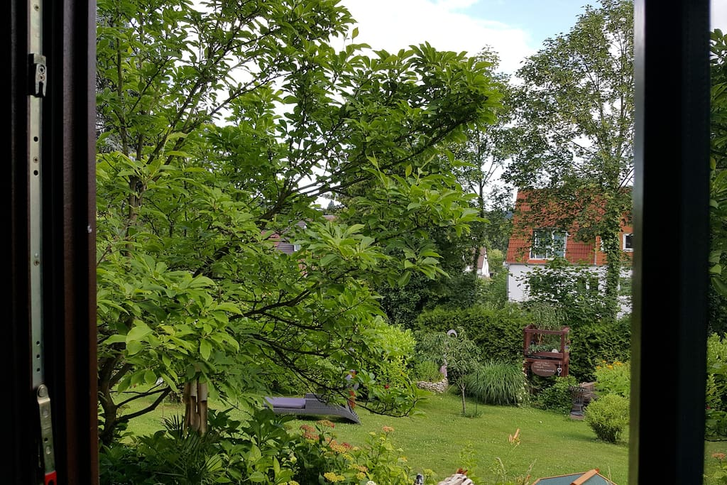 Blick aus der Wohnung in der Garten
