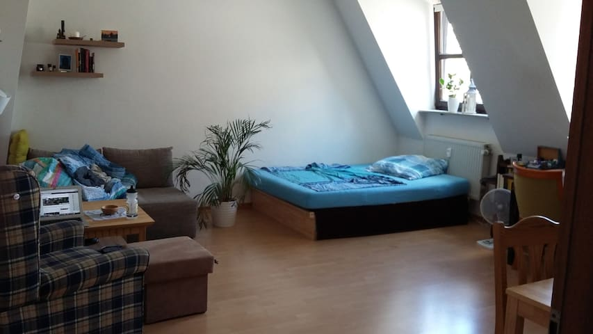 Cosy, well located apartment close to Königsplatz
