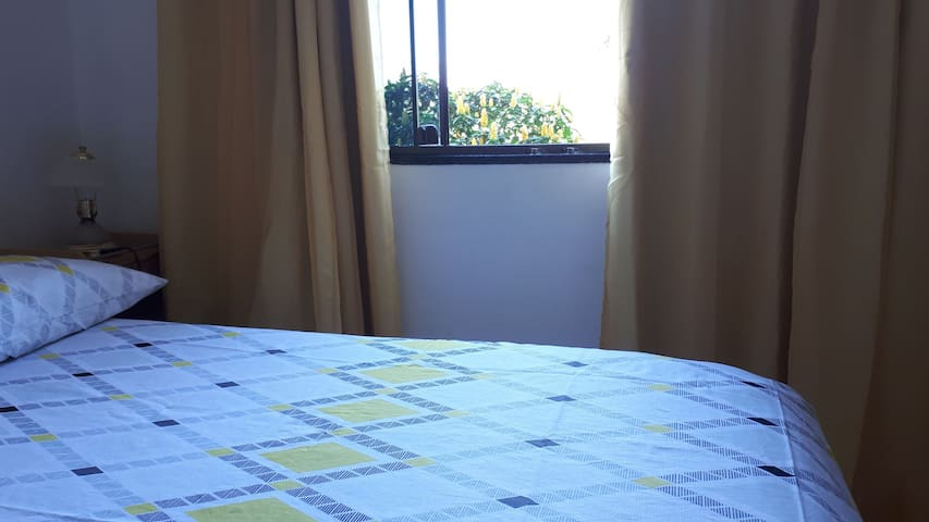 Primiero House Quarto Yellow