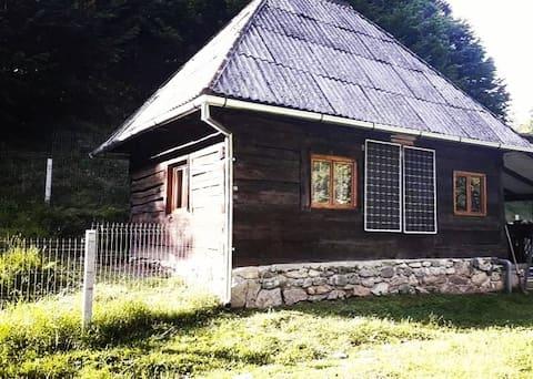 Cozy hut. Retreat in the wild nature of Romania