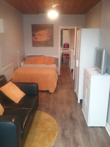 Stylish self contained studio apartment - Athlone - Daire