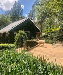 Alliepad cottage, on a quiet lifestyle farm.